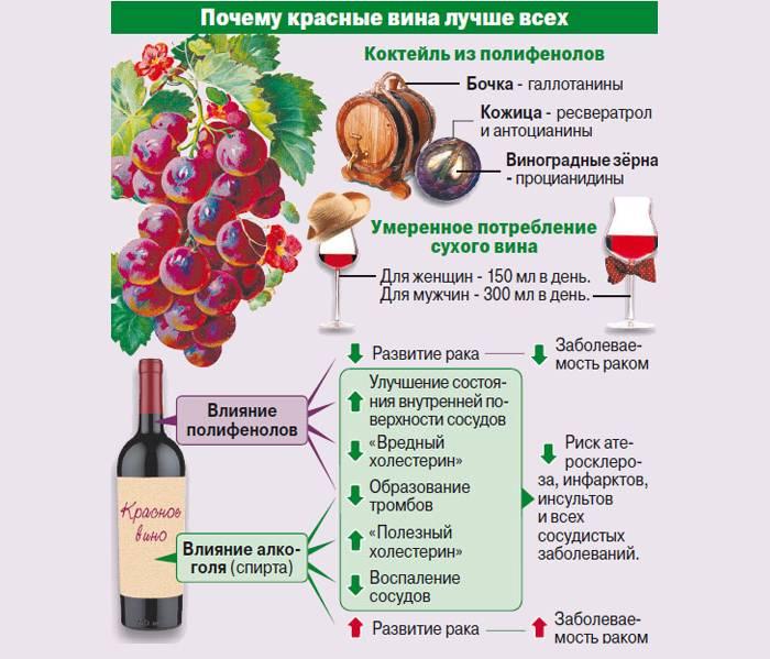 Неожиданные свойства красного вина