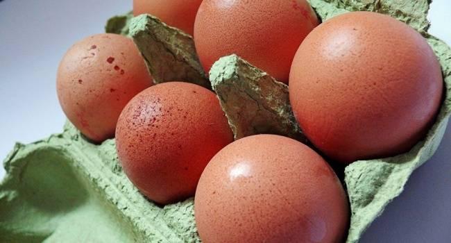 4 вида продуктов, которые могут вызвать пищевое отравление