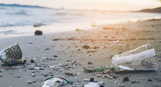 Стоит ли беспокоиться о микропластике в продуктах