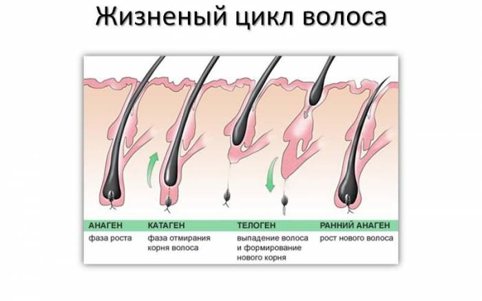 Курение, как причина выпадения волос