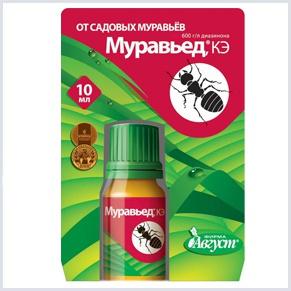 Препарат, который поможет избавиться от муравьев в саду и огороде