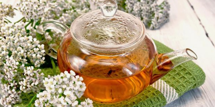 Чай из цветов тысячелистника