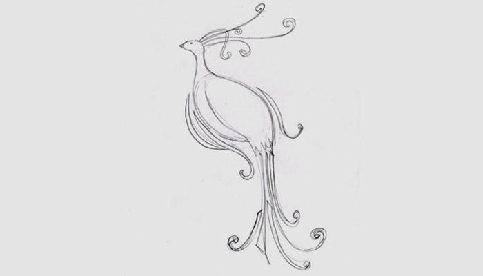Эскиз птицы