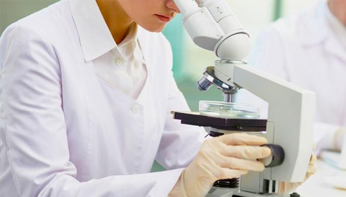 Исследование анализа на ВПЧ