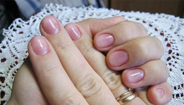 Наращивание ногтей биогелем в домашних условиях для начинающих 354