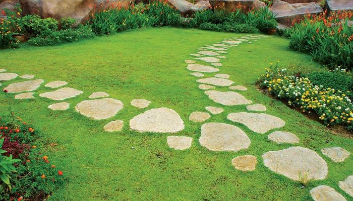 Самодельная дорожка в саду