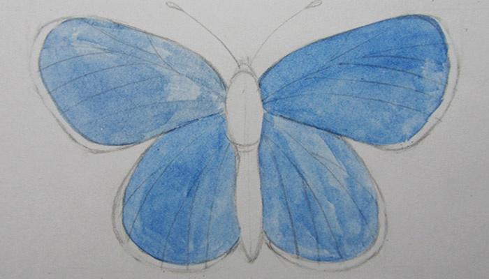 Закрашенная синим карандашная основа