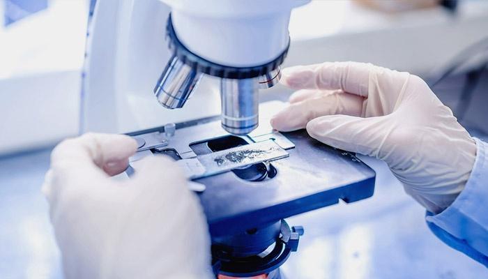 Исследование анализа на глисты