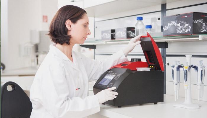Лаборант исследует анализ на хеликобактер