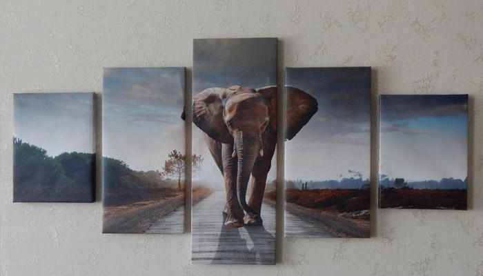 Составная картина со слоном