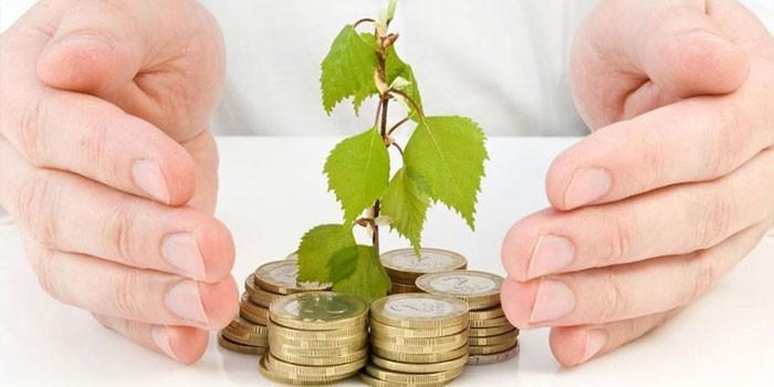 Монеты и росток