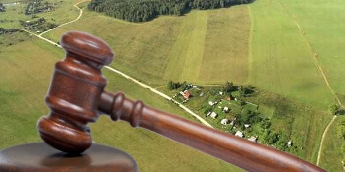 Земельный участок и судебный молоток