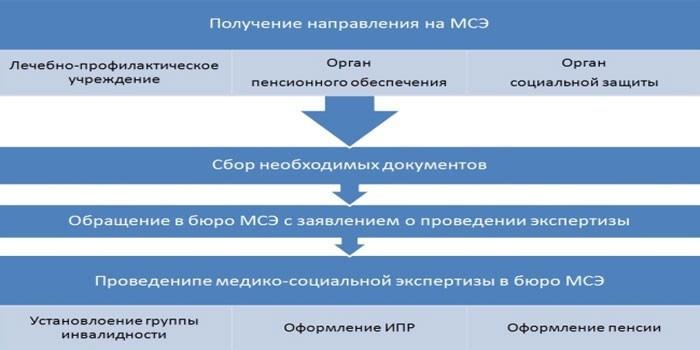 Порядок получения направления на медицинскую комиссию