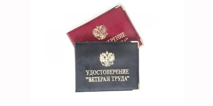 Ветеран труда в 2020 году москва получить