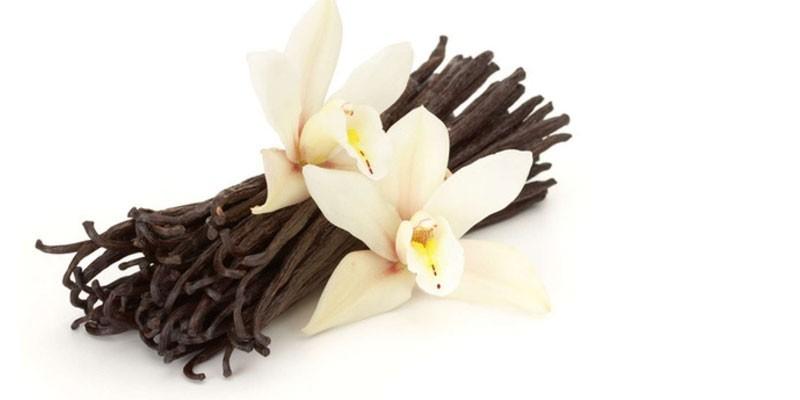 Связанные в пучок стручки ванили