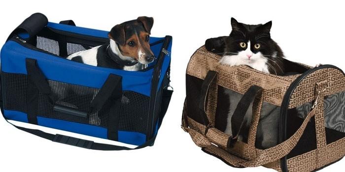 Переноска для кошки - как выбрать мягкую, пластиковую, рюкзак или корзинку по характеристикам и цене