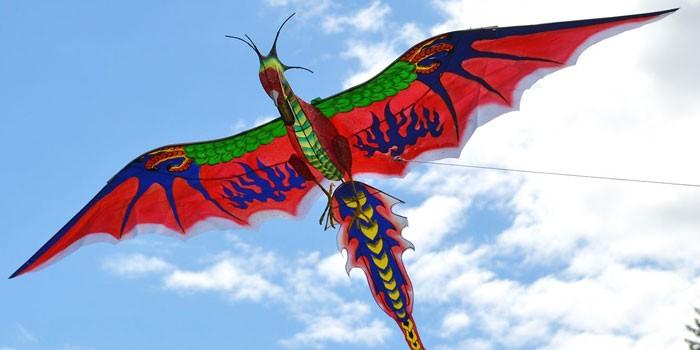 В виде дракона