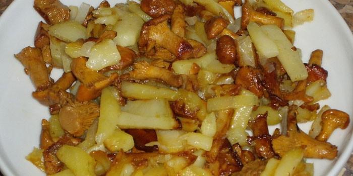 Жареная картошка с лисичками на тарелке