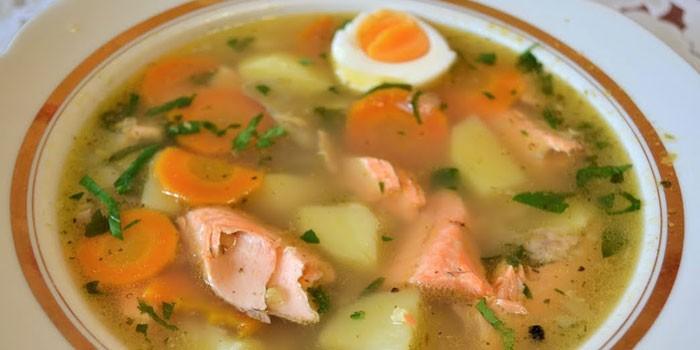 Тарелка супа из красной рыбы