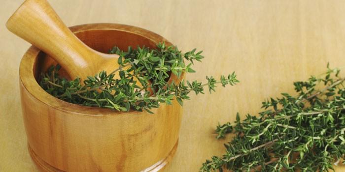 Трава тимьян и ступка