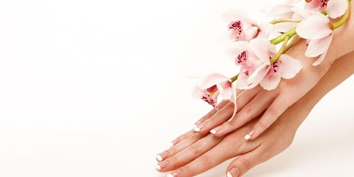 Женские руки и орхидея
