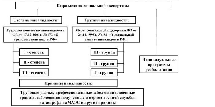 Функции Бюро медико-социальной экспертизы
