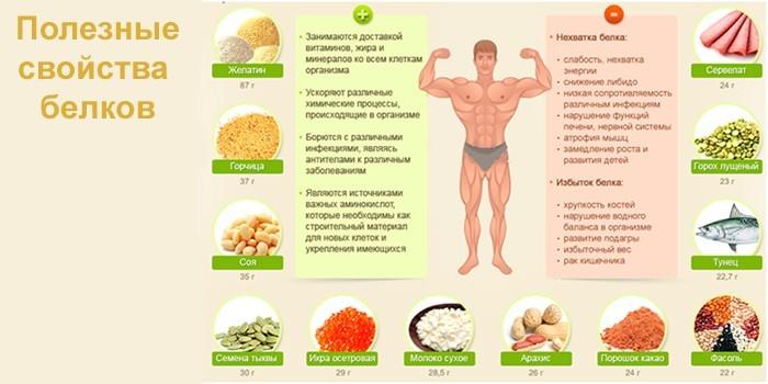 Полезные свойства белков