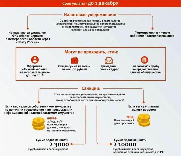 Срок уплаты и штрафные санкции