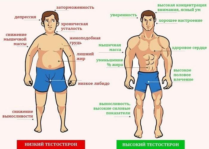 Симптомы пониженного и нормального уровня тестостерона
