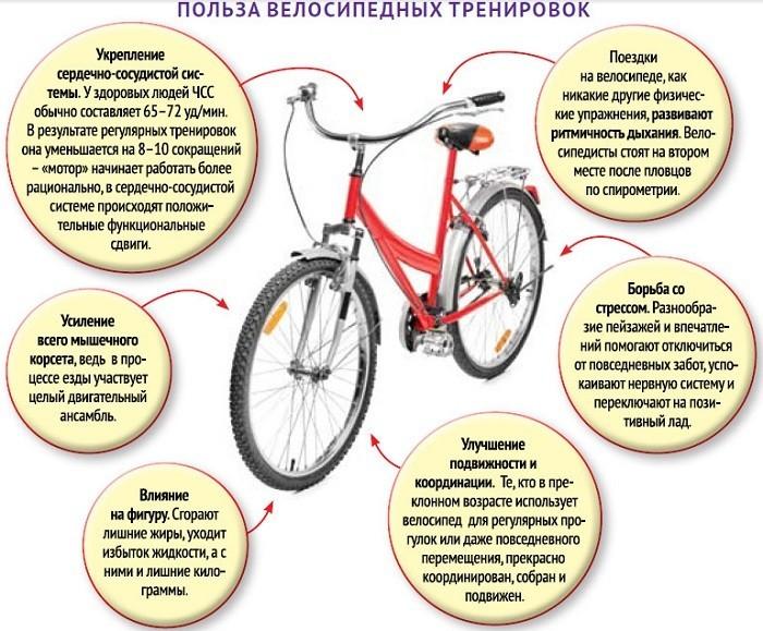Польза велосипедных тренировок