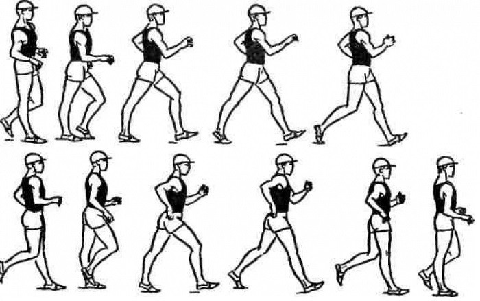 Техника спортивной ходьбы