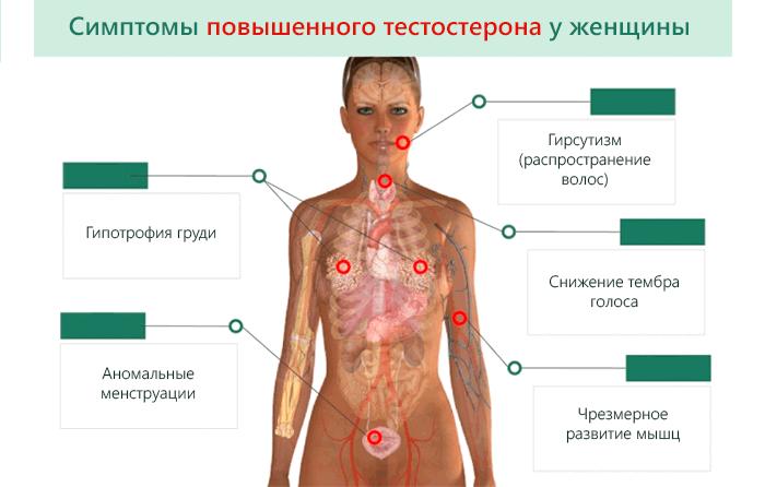 Симптомы повышенного тестостерона
