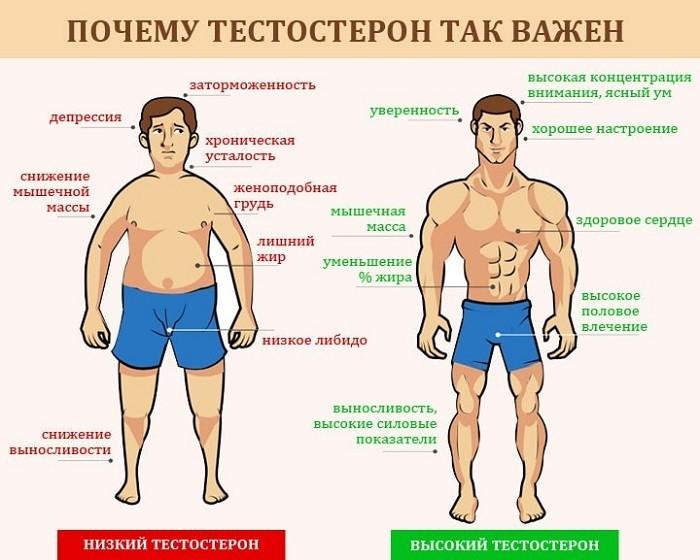 Признаки недостатка мужского гормона в организме