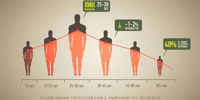 Выработка тестостерона по возрасту