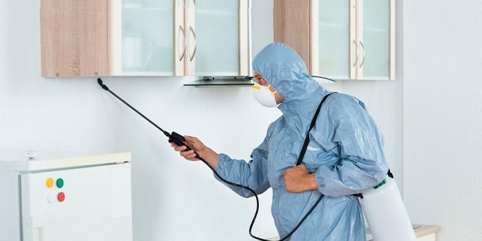 Работник проводит дезинсекцию кухни