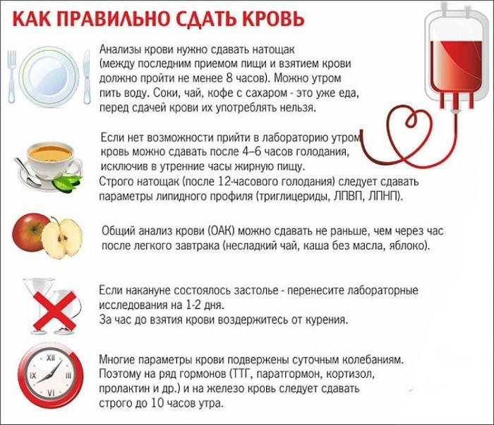 Правила подготовки к забору крови